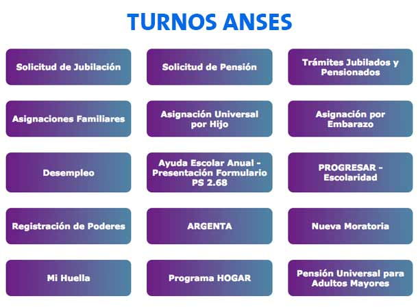 ANSES Turnos ANSES